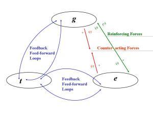Flow Chart_BG